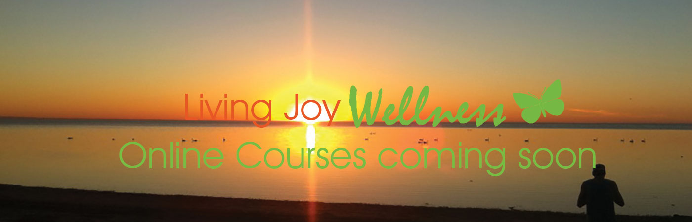 wellcess-courses